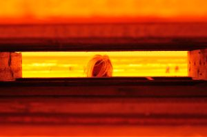 Erna oranje 1