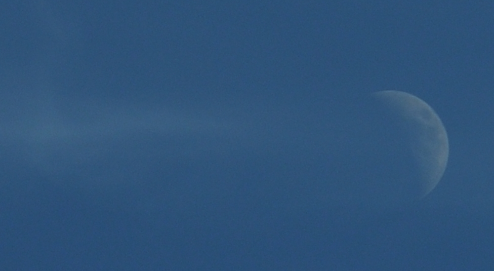 luna2_DSC9299