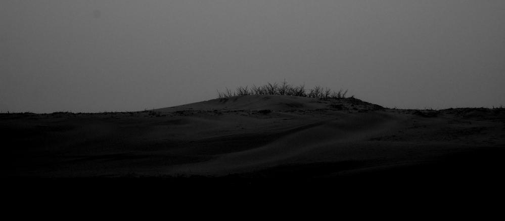 desert_dsc2874