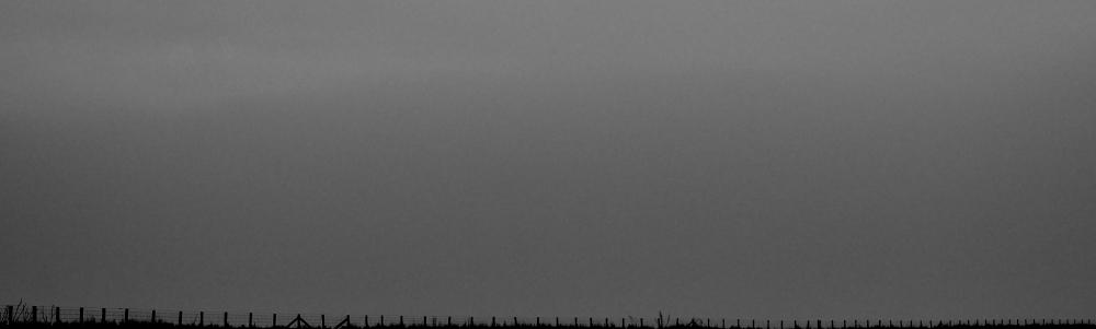 fence_DSC5847
