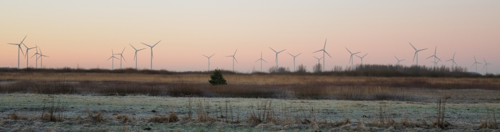 windmolens_DSC1972