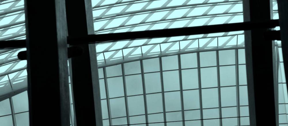 perspective_DSC2552