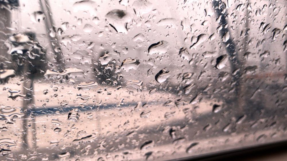 rain_0909B88A-7F73-4684-B8AC-D85DFBA07311